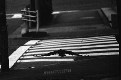 Masahisa Fukase: Koen-dori, Shibuya, 1982 ©Masahisa Fukase